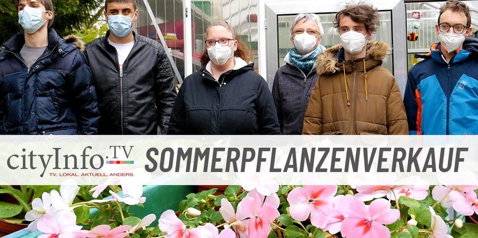Pressebericht Sommerpflanzenverkauf